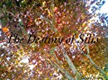 The Destiny of Silis (The Silis)