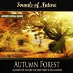 Autumn Forest (Nature Sounds)