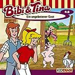 Ein ungebetener Gast (Bibi und Tina 48) | Nelly Sand