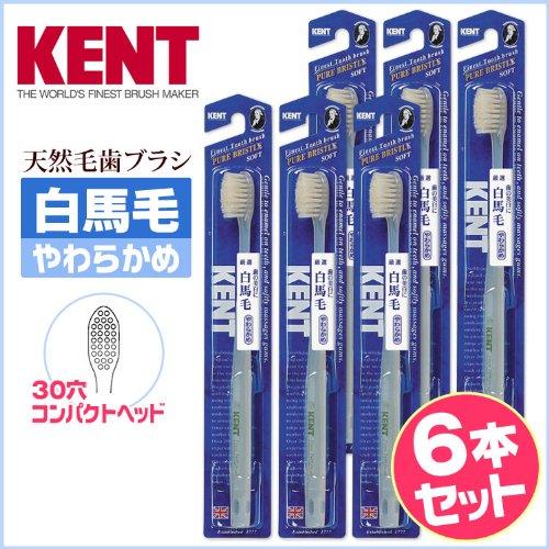 KENT 白馬毛歯ブラシ 6本セットKNTー1132
