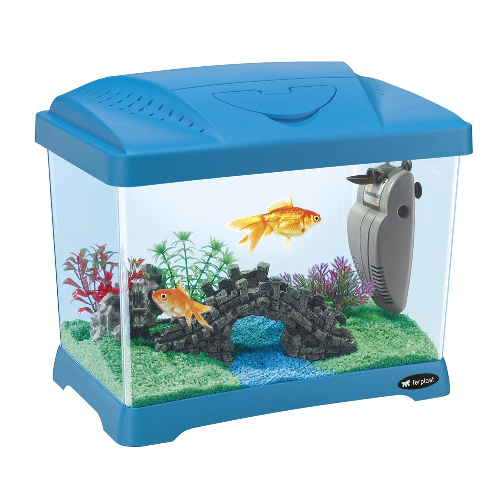 Fish aquarium price india - Buy Ferplast Capri Junior Aquarium Blue Online At Low Prices In India Amazon In