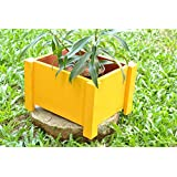 The Garden Store Small Square Wooden Planters