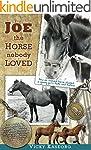 Joe -- the Horse Nobody Loved (Burton...