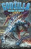 Godzilla: Rulers of Earth Volume 5 (Godzilla Rulers of Earth Tp)