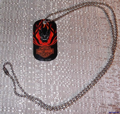 Harley Davidson BLACK FLAMING SKULL Metal DOG TAG w/ 20