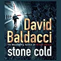 Stone Cold Audiobook by Robert Swindells Narrated by Christian Rodska