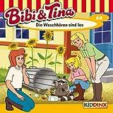 Folge 63: Die Waschbären Sind Los title=