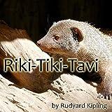 Riki-Tiki-Tavi