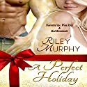 A Perfect Holiday Audiobook by Riley Murphy Narrated by Kai Kennicott, Wen Ross