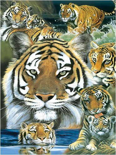 Pollyanna Pickering Fire & Water Jigsaw Puzzle 1000pc - 1
