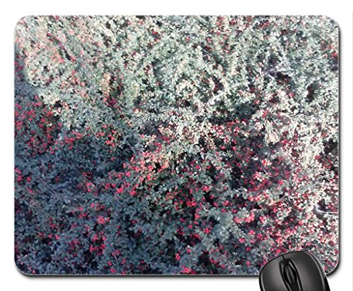 arbusti-mouse-pad-tappetino-per-mouse-mouse-pad-foreste