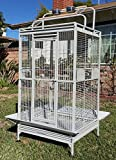 Large Wrought Iron Open/Close Play Top With Double Ladders Bird Parrot Cage, Include Metal Seed Guard and Play Top *White Vein*