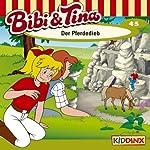 Der Pferdedieb (Bibi und Tina 45) | Ulf Tiehm