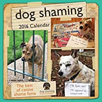 Dog Shaming 2016 Wall Calendar