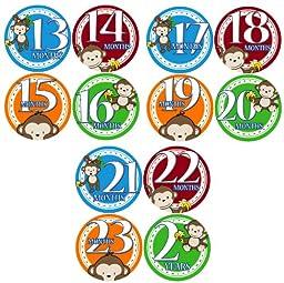 13-24 MONTHS BOY JUNGLE MONKEY Baby Month Onesie Stickers Baby Shower Gift Photo Shower Stickers, baby shower gift by OnesieStickers