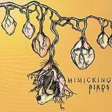 Mimicking Birds (Dig)