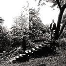 Timber Timbre (2CD Ltd)