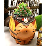 HEYFAIR Cute Cartoon Totoro Cactus Succulent Planter Pot Container Gardens (A)