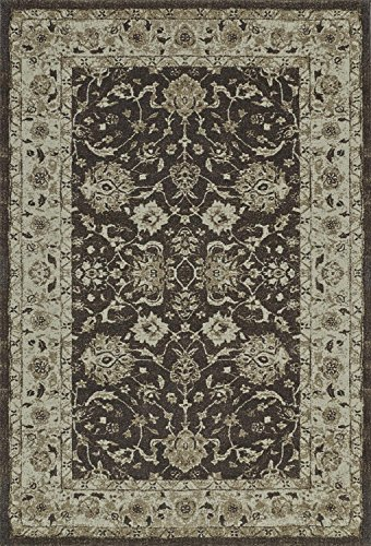 Chocolate Brown Area Rug, Traditional Design 3-Foot 3-Inch X 5-Foot 1-Inch Distressed Persian Bordered Carpet