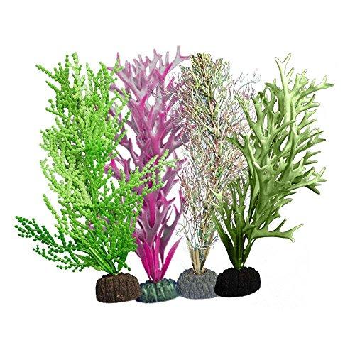 weco-marine-plant-green-giant-kelp-fine-brach-halimeda-red-kelps-multipack-110