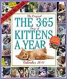 365 Kittens-a-Year 2015 Wall Calendar