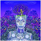 Erykah Badu New Amerykah Part Two (Return of the Ankh)