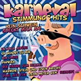 """Karneval Stimmungs Hitsvon """"Various"""""""