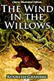 Image of The Wind in the Willows (Classic Illustrated Edition)
