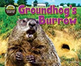 img - for Groundhog's Burrow (Hole Truth! Underground Animal Life) book / textbook / text book