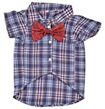 #5: DOUGE COUTURE Shirt For Dogs (DC-T-002_14, Blue, 14)