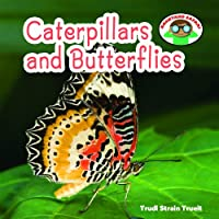Caterpillars and Butterflies (Backyard Safari)
