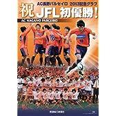 祝JFL初優勝! AC長野パルセイロ2013記念グラフ