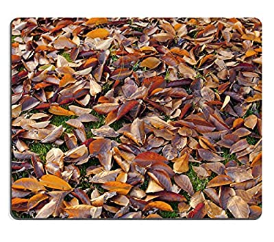 MSD Natural Rubber Gaming Mousepad School supplies colored pencils in a row forming background Image ID 24715726