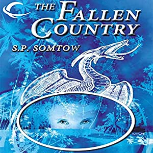 The Fallen Country Audiobook