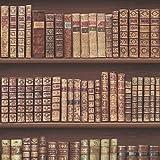 Antique Bookcase Wallpaper - Brown - 575208