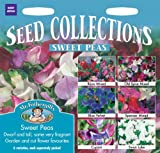 Mr Fothergills - Pictorial Packet - Flower - Sweet Pea - Collection - 25 Seeds
