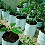 LARGE & BEST POLY GROW BAGS, UV Treated, 100% Virgin Polyethyene Material - Thick, Durable, Portable and Last Longer, Perfect for Terrace, Balcony, Any Small Space, Professional Looking White Outiside, Black Inside, 20 bags.