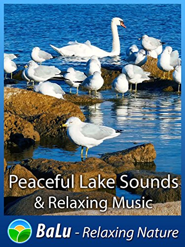 Peaceful Lake Sounds & Relaxing Music