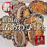 魚水島 新潟県産 天然 活アワビ・あわび 1kg 訳あり