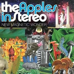 New Magnetic Wonder