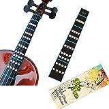 FineFun Violin Finger Guide /Fingerboard Sticker guide Label Finger Chart For Size 4/4,3/4 ,2/1,4/1,8/1,10/1 (4/4) (Tamaño: 4/4)