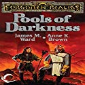 Pools of Darkness: Forgotten Realms: The Pools, Book 2 Audiobook by Anne K. Brown, James M. Ward Narrated by Teresa DeBerry