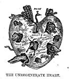 img - for The Bible Looking Glass Illustrated [6 Books in 1]: Religious Emblems Being a Series of Emblematic Engravings; Religious Allegories; Christian Similitudes; Elegy Written in a Country Church Yard; Sunday Book of Pleasing and Comforting Literature book / textbook / text book