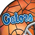Florida Gators Helmet Accent Lamp by The Bradford Exchange