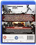 Image de Legend of the Fist [Blu-ray]