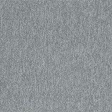スミノエ タイルカーペット ECOS LP-2054 50X50cm 20枚セット 13248081