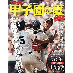 アサヒグラフ 甲子園の夏 2012 2012年 9/5号 [雑誌]