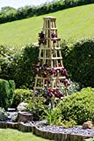 Climbing plant trellis pyramid - Wooden - Plant support - Available as small, medium or large - Pair or single - Excellent for roses, runner beans and climbing plants - Use in flower beds, borders and planters - Pressure treated timber - Long lasting and