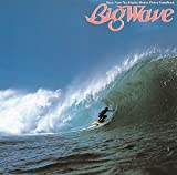 Big Wave(30th Anniversary Edition) [Analog]