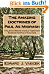 The Amazing Doctrines of Paul As Midrash